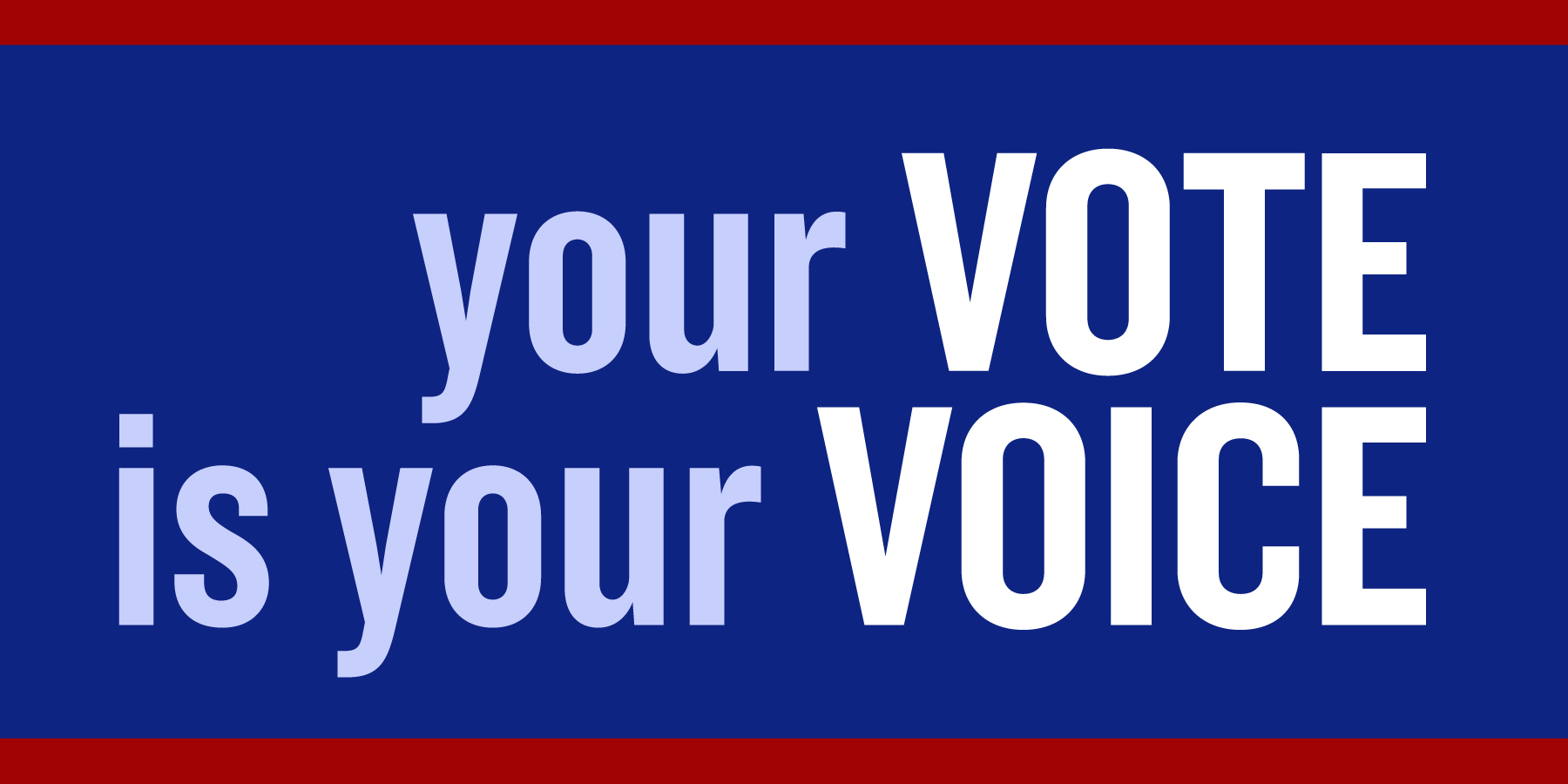 Geaux Vote! – Louisiana Violence Reduction Coalition