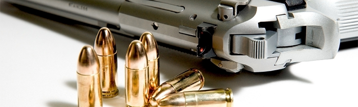 What federal gun legislation is currently being proposed?